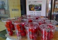 中瀬農園のトマト30日まで継続販売 - げんきの郷の日々
