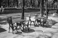 オープンカフェで春を満喫する透明人間たち - Silver Oblivion