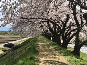 上京 - 思ったことを気ままに書くブログ