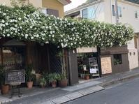 鎌倉緑景「長谷へ」 - 海の古書店
