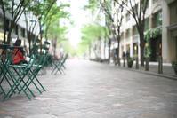 緑の季節へ - Today's one photograph