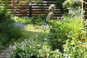 輝く季節 ブルー&イエローのお花たち~♪ - miyorinの秘密のお庭