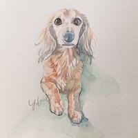 永遠の。 - < Eyes of a Dog >