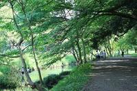 大和市ふれあいの森 - つれづれ日記