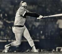プロ野球 ……… 変な 助っ人達 - SPORTS 憲法  政治