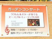 ブルーボネットでの演奏、ありがとうございました! - 愛知・名古屋を中心に活動する女性ギタリストせきともこのブログ