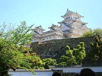 615、姫路城のシャガと大観の胡蝶花 - 五十嵐靖之 趣味の写真と短歌