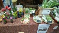 ムモクテキマルシェとエシカルビーガンフェス, Farmer's market at Mumokuteki  Kyoto and Vegan fest at Osaka - latina diary blog
