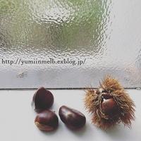 秋の味覚 - メルボルン奮闘日記2