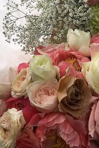 29日日曜夕方、お引き取り限定イチエッタのお知らせ - 一会 ウエディングの花