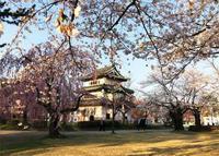 【サクラ前線 弘前城から函館五稜郭、そして・・・】 - 性能とデザイン いい家大研究