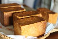 先月のレッスンの様子 - 横浜パン教室tocotoco〜ワンランク上のパン作り〜