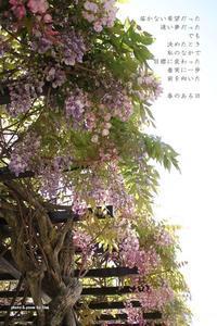 春のある日 - Poetry Garden 詩庭
