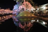 弘前公園夜桜_2018.04.23 - 弘前感交劇場