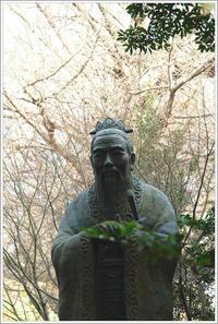 湯島 -9 - Camellia-shige Gallery 2