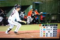春の珍事小林誠司、まさかの首位打者 - 酎ハイとわたし