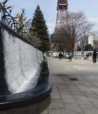 大通公園の春景色噴水・木蓮・こぶし - ワイン好きの料理おたく 雑記帳