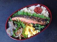 4/25鮭弁当 - ひとりぼっちランチ