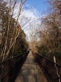 2月のコバトンロード(埼玉県こども動物自然公園) - 続々・動物園ありマス。