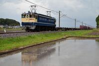 鹿島貨物を牽引するEF65特急色 - 鉄道日記コム