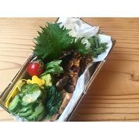 鯖みりんBENTO - Feeling Cuisine.com