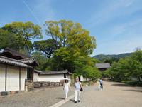 初夏の陽気の京都を歩きました。(醍醐寺) - ご無沙汰写真館