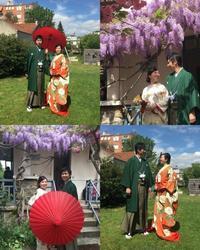 桜と藤満開のパリ結婚式 - 着物でパリ