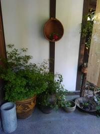 鎌倉路地フェスタ後半です - 和の暮らしを楽しむ -鎌倉 和楽庵-