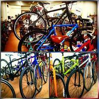 クロスバイク色々 - 滝川自転車店