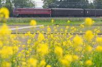 2018.04.12  高崎〜東北本線、旧型客車追いかけ撮影記 - 8001列車の旅と撮影記録