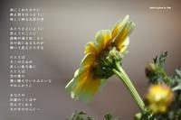 その手のひら - Poetry Garden 詩庭