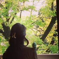 無事お引越ししました~【リッチーの大冒険編】 - Sola*Tsuchi  花とアクセサリー