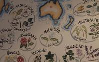 自然のエッセンスで香水作り/調合体験レッスン - 千種区本山にあるアロマ&クレイセラピーサロン Le Bonheur