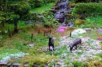 いろんなところから - 金沢犀川温泉 川端の湯宿「滝亭」BLOG