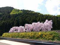 オーダージオラマ、いすみ鉄道新田野風 - e-stationショップブログ