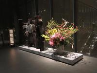 リトルブラックドレスを着ないで、明日の名古屋行きを祈る - おしゃれを巡る冒険