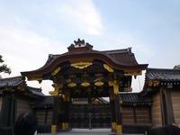 二条城 桜まつり ライトアップを堪能して帰りまーす♪ - mayumin blog 2
