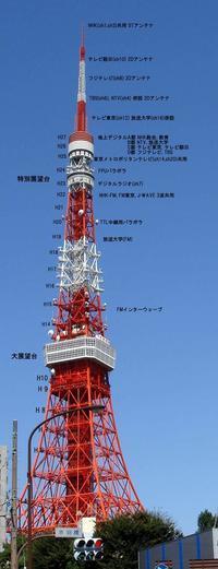 東京タワーの夢 - 蜂谷真紀  ふくちう日誌
