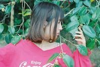 緑と赤 - photomo