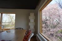 自宅から見る桜風景 - 函館の建築家 『北崎 賢』日々の遊びと仕事