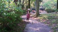 那珂川町 中之島公園 - ほんと。。。ときどき日記
