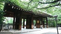 「靖国神社と千鳥ヶ淵」 - こころ絵日記