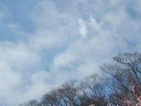 東京の空2 - はーとらんど写真感