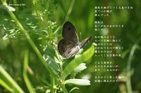 指先 - Poetry Garden 詩庭