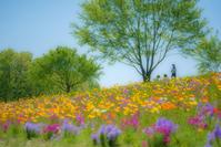 Repose à l'ombre de l'arbre - Une fleur