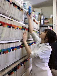 ゴールデンウイーク中の診察は通常通り - 京都市のメイプル動物病院のブログ(お知らせ)