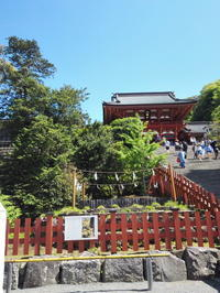 鎌倉散歩 - 藍。の着物であるこう