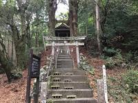 桑の川の鳥居杉高知県南国市 - 四国 高知からお気に入りスポットを紹介