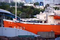 名古屋港水族館 - へごきゃらにゃっぺ
