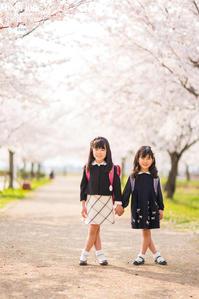 2018/3/29 入学式の写真 - 「三澤家は今・・・」